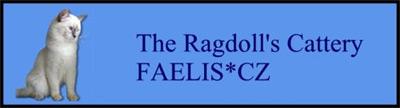 Faelis CZ - Ragdoll cattery(Ragdoll lilac, chocolate) - http://www.faelis.cz/